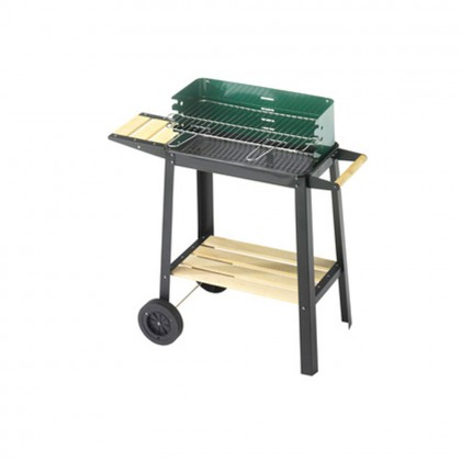 Barbecue a carbone  50-25 green/w cod.50311