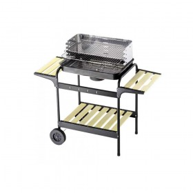 Barbecue 60-40 Green Line COD.80601